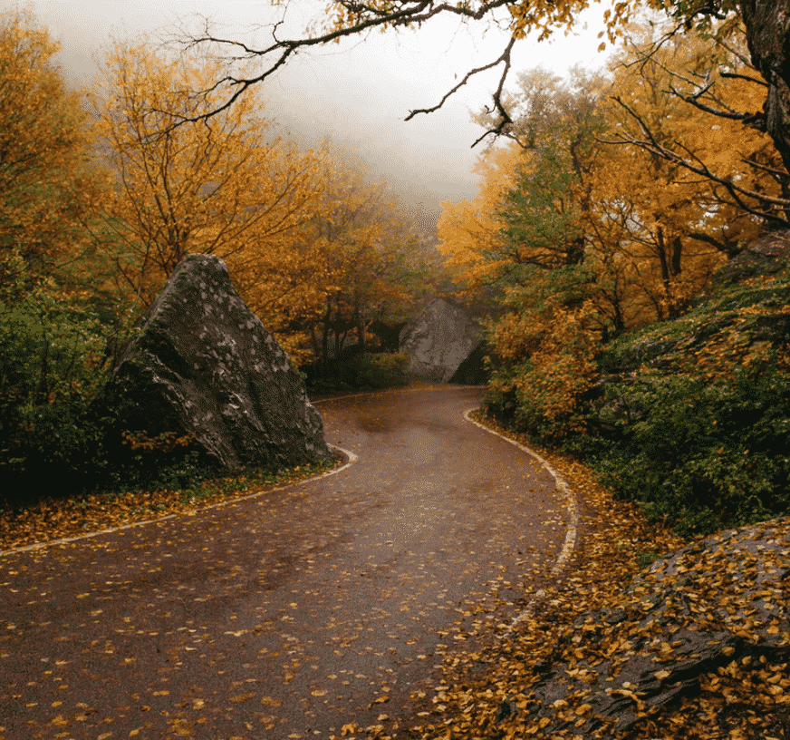 Vermont Road Trips