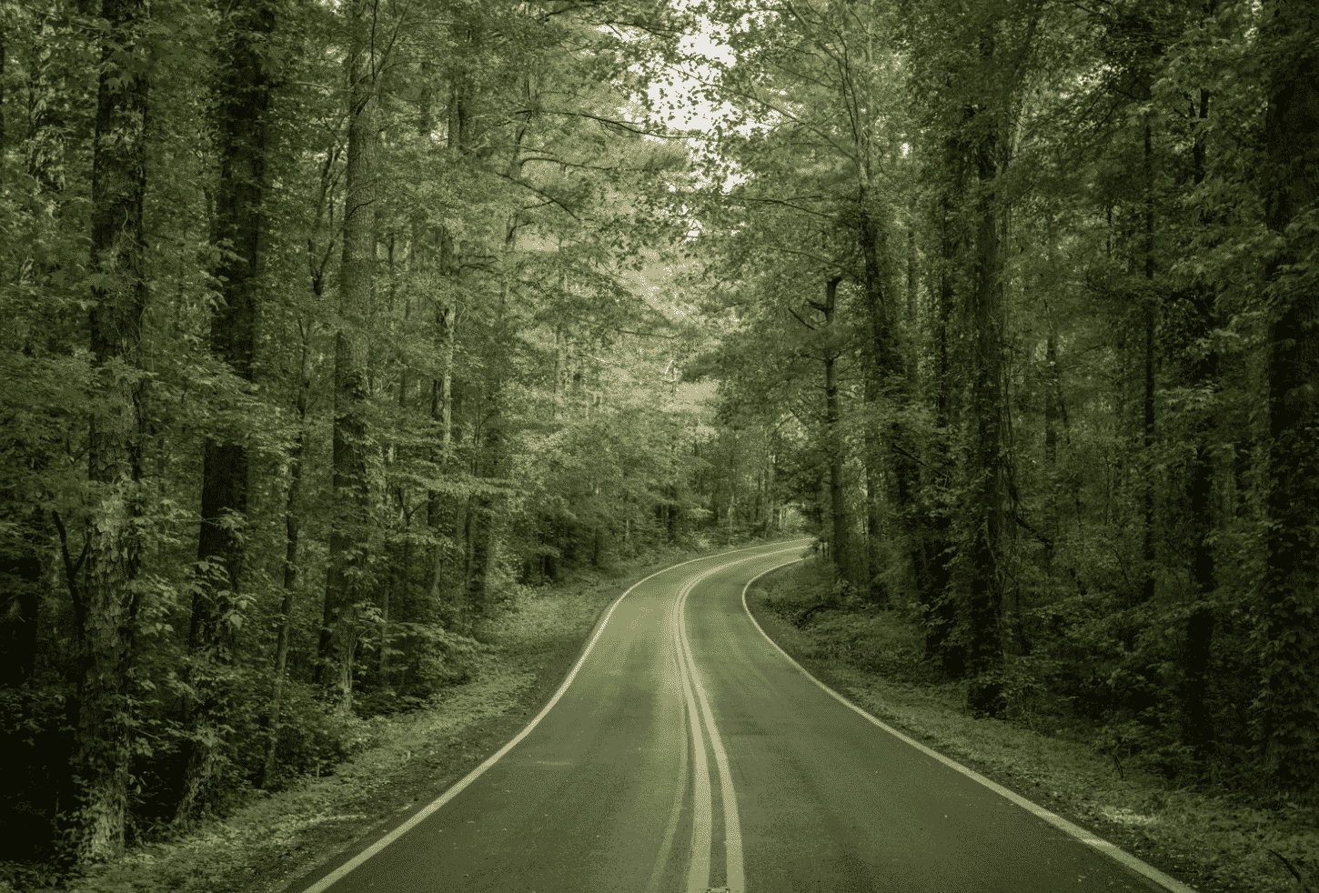 Tennessee Road Trips