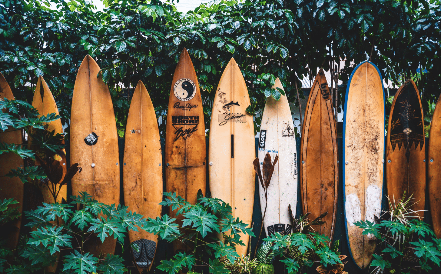 Hawaii Slang