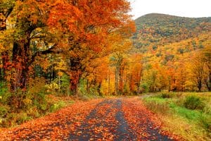 fall foliage drives New England