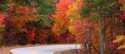 New York fall foliage