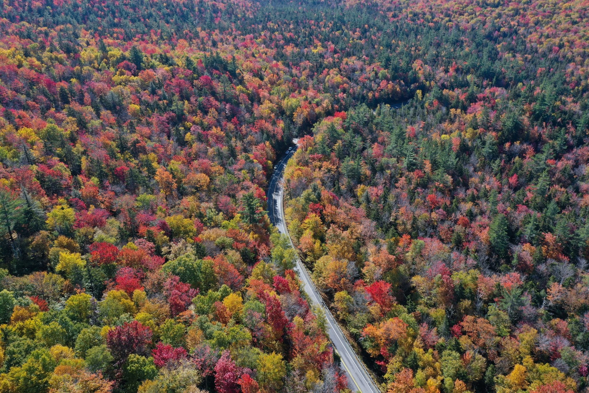 17 Stunning US States To Enjoy Fall Foliage In This Year travel