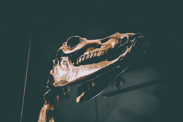 Best things to do in Los Angeles with kids La Brea Tar Pits
