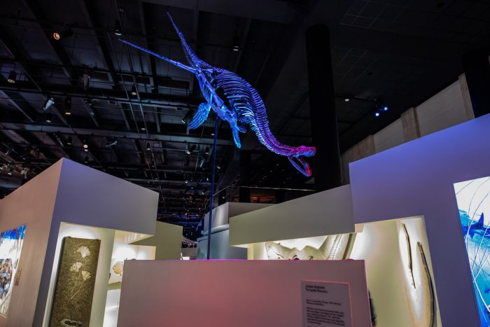 Best things to do in Houston with kids History Muesum