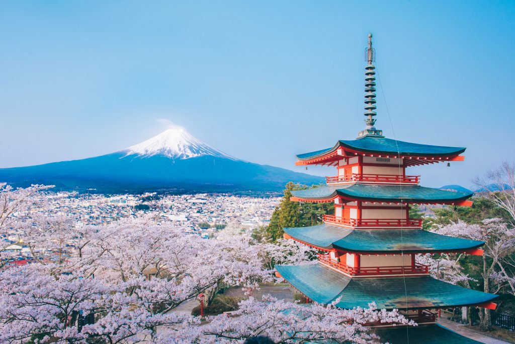 What To Know About Japan S Iconic Cherry Blossom Festival