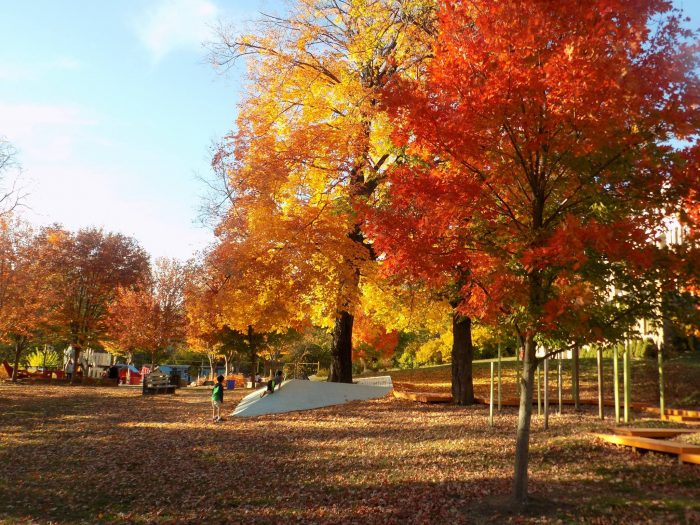 Best things to do in Philadelphia with kids the park