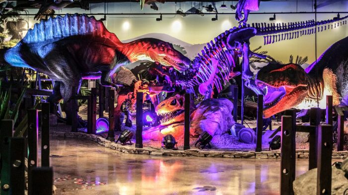 Best things to do in Phoenix with kids Pangaea