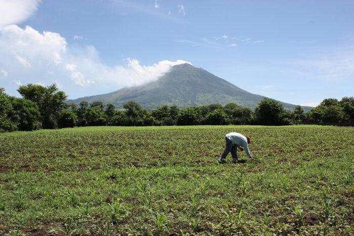 Interesting facts about El Salvador