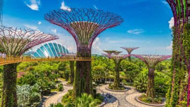 Interesting facts Singapore