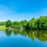 Best wild swimming spots london