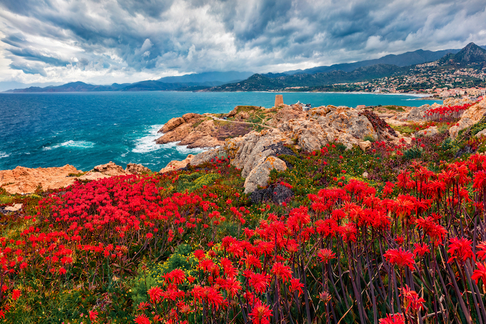Sardinia Corsica