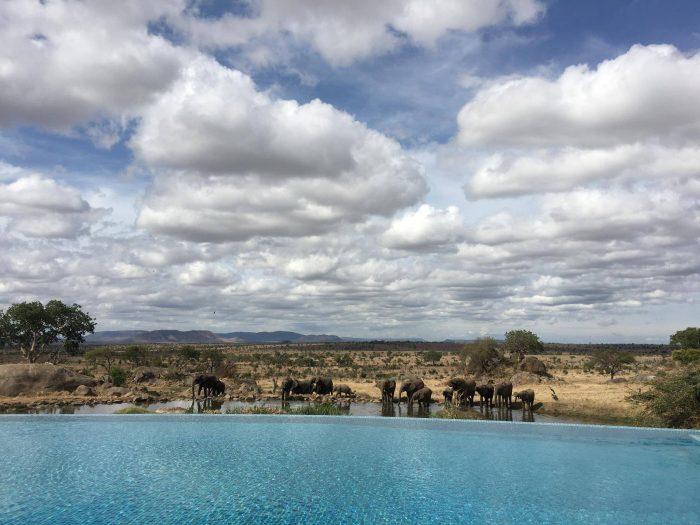 Four Seasons Safari Lodge, Tanzania